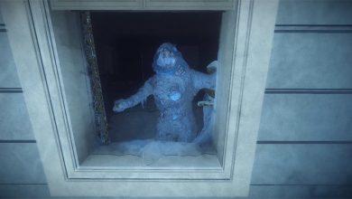 kona frozen
